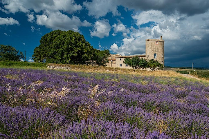 Lavender Plant Initiation Retreat with Pam Montgomery- France image