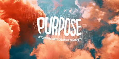 Purpose: Vineyard Young Adult Gathering tickets