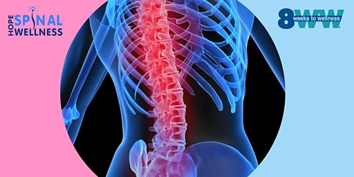 Back Pain Solutions