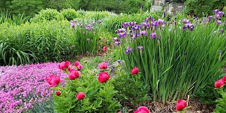 Garden Designing for the Impulse Buyer tickets