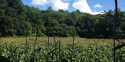 Nutrient Management Plan Updates: Brattleboro Drop-In Sessions