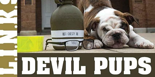 LINKS Devil Pups 03-2020