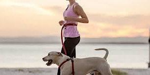Samen sporten met de hond: Lopen
