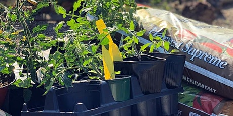 Garden Gatherings: Spring Vegetable Gardening tickets