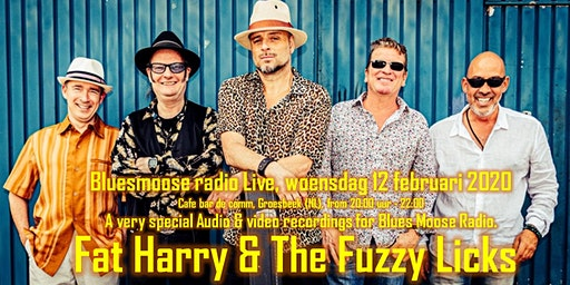 Fat Harry & the Fuzzy Licks Live at Bluesmoose radio