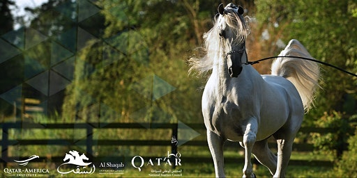 The Arabian Horse: Lore and Legend