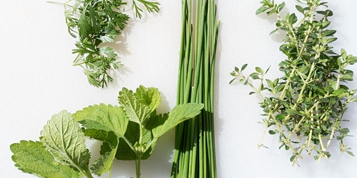 Build Your Own Herb Container Garden Class