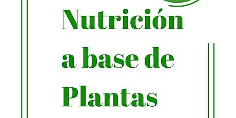 Nutrición A Base De Plantas entradas