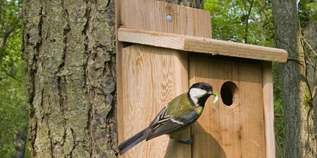 Bird Box Building and Decorating at Ryton Pools Country Park tickets