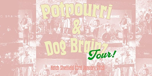 Potpourri & Dog Brainz in Sheffield