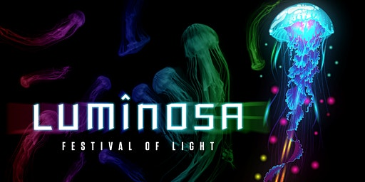 Luminosa: A Festival of Light (Weekday Tickets)- Luminosa: EXTENDED - FEBRUARY 9th