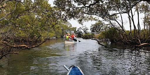 Canoe Discovery: Shorncliffe