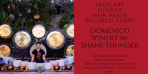 New Year! New Decade! SelfCare Sunday: Wellness Event @ Domenico Winery