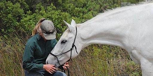 HORSENALITY WORKSHOP- Horseless Workshop
