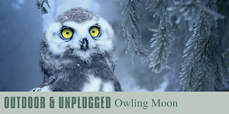 Outdoor & Unplugged: Owling Moon tickets