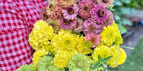 The Beginner's Spring Cutting Garden and  Flower Seed Propagation Workshop tickets