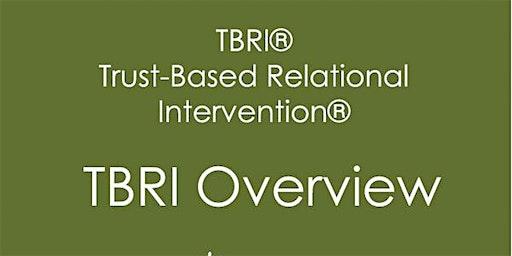 TBRI, Trust Based Relational Interventions