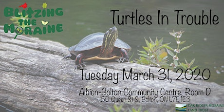 Turtles In Trouble tickets