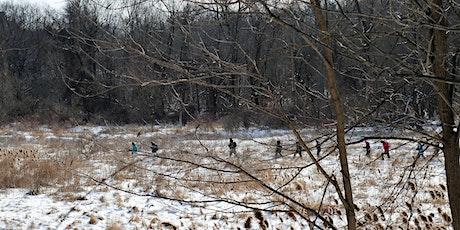 Winter Tree Walk tickets
