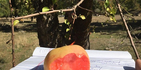 Albert Etter, Historical Orchards and Apples at Filoli Gardens tickets