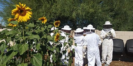 Honey Hive Farms hands on beekeeping classes. Pay for class on our website.