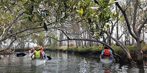 Canoe Discovery: Tinchi Tamba Adult Event