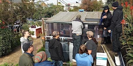 Rainwater Harvesting tickets