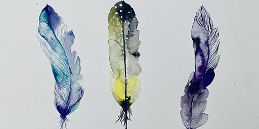 Water Colour Feathers