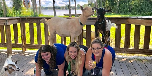 Goat Yoga Tampa plus free drink! In the Loop Brewing, Land O Lakes; 2/23/20
