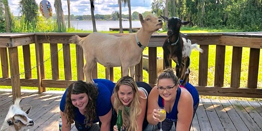 Goat Yoga Tampa plus free drink! In the Loop Brewing, Land O Lakes; 3/29/20