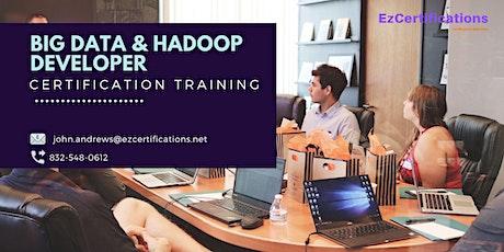 Big Data and Hadoop Developer Certification Training in Sudbury, ON tickets