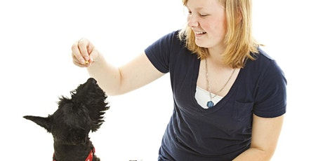 Dog Trick School 2020 - 6 week course tickets