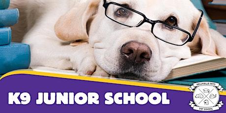 Junior School 2020 - 4 week course tickets