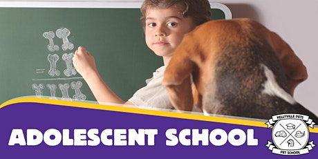 Adolescent Dog School 2020 - 4 week course tickets