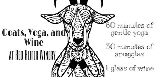 Goats, Yoga, and Wine at Red Heifer Winery 1:00