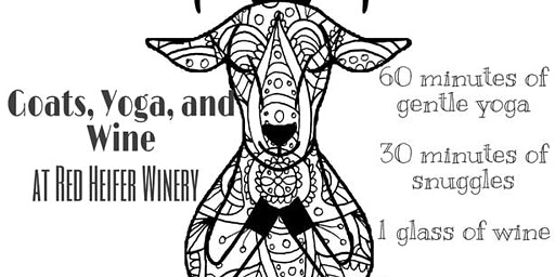 Goats, Yoga, and Wine at Red Heifer Winery 3:00