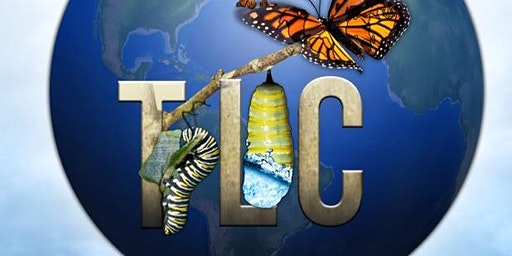 True Life Change - Testimony Series