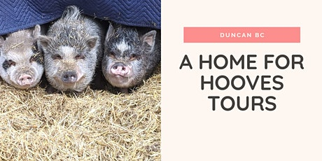 A Home for Hooves Farm Sanctuary Tour tickets