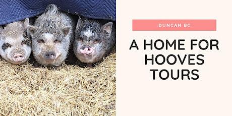 A Home for Hooves Farm Sanctuary Tour tickets