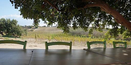 Wine tasting: A taste of Sicily