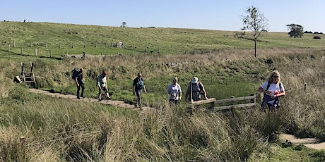 Free Group Social Hike tickets