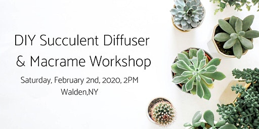 DIY Succulent Diffuser  & Macrame Workshop