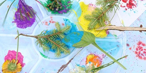 Exploring Nature with Paint