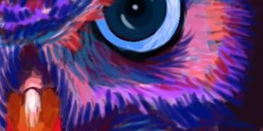 Pour & Paint OWL