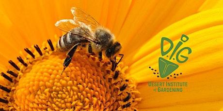 Desert Institute of Gardening: Buzz About Bees tickets