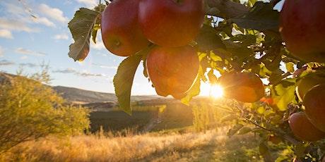 Della Terra | Farm to Table Cider Pairing Dinner Ft. Tieton Cider Works tickets