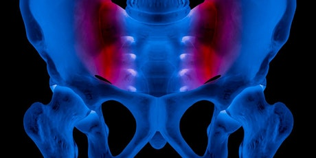 The Combined Approach: Sacroiliac Joint & Pelvis, Tutor: Howard Turner tickets