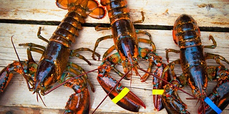 Fredericksburg Lobster Festival tickets