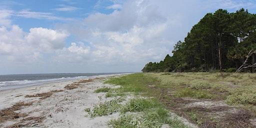 Otter Island Beach Cleanup