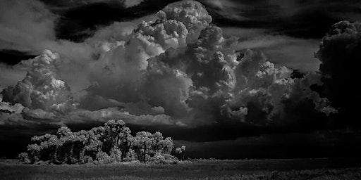 The Florida Landscape - Photography Workshop